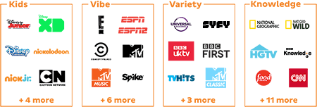 channel pack choices include kids, vibe, variety and knowledge